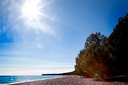 alean abkhazia 3 Абхазские пляжи