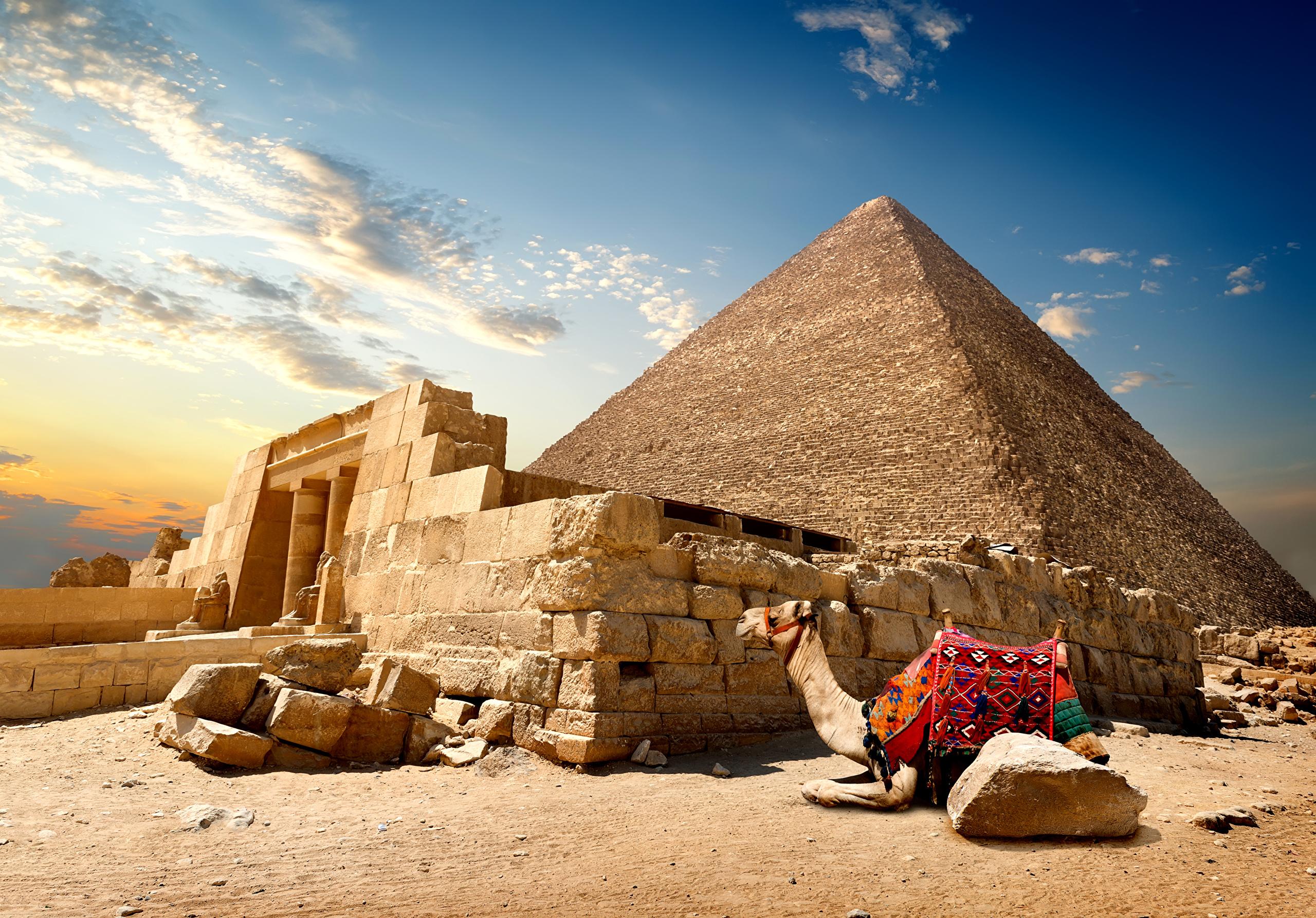 Картинки красивая египта