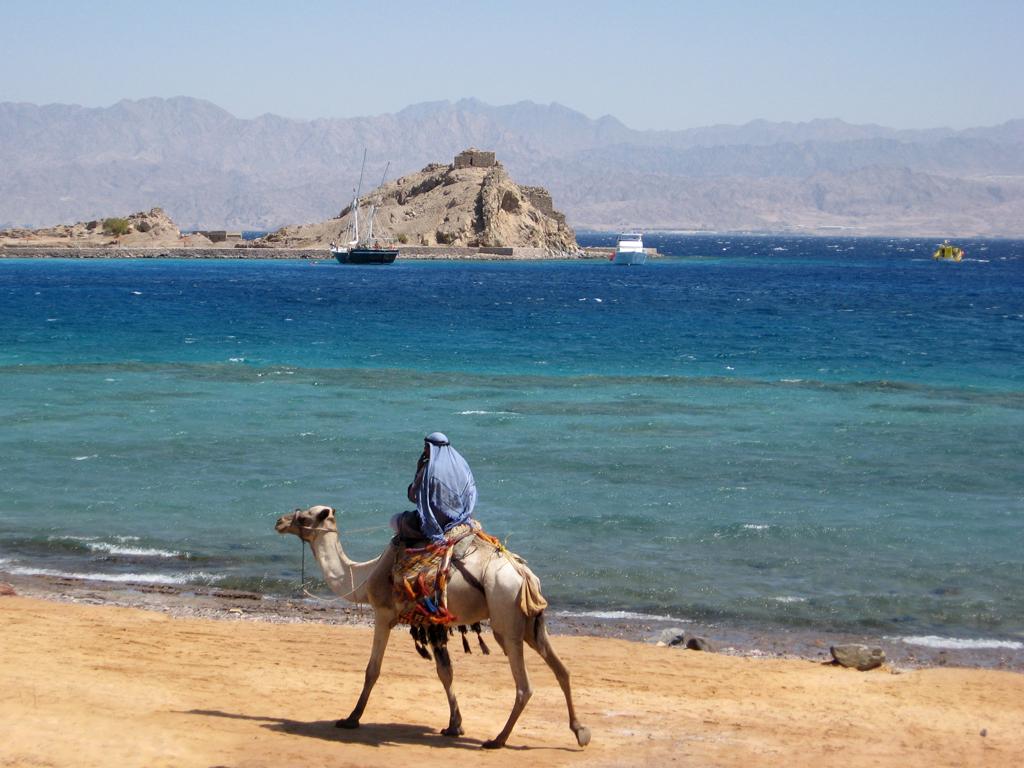 отдых египет фото туристов виду, что
