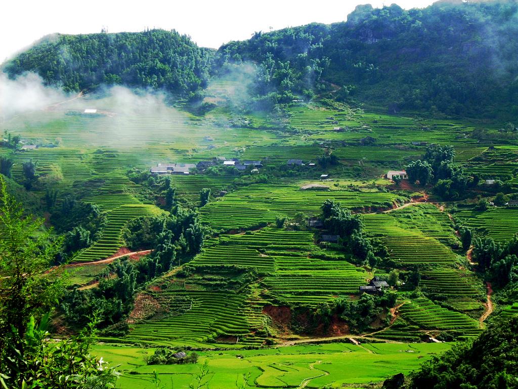 Вьетнамская деревня Гьянг Мо запустила уникальные туры