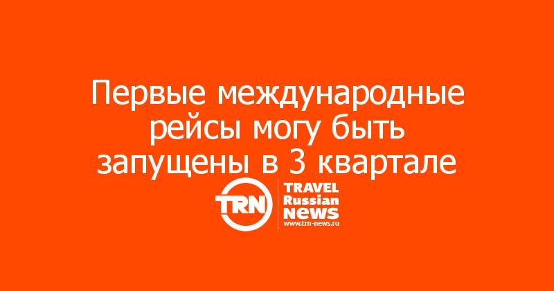 Первые международные рейсы могу быть запущены в 3 квартале