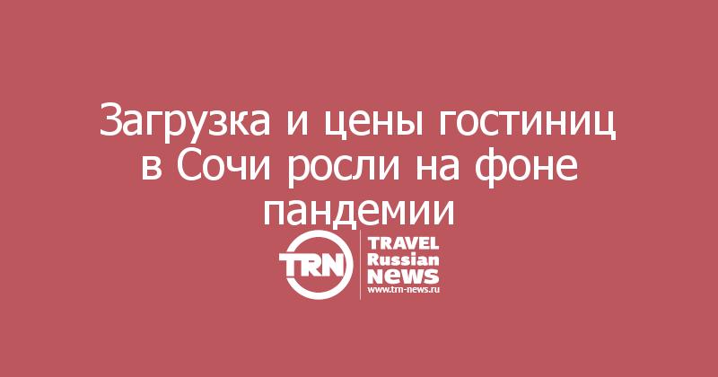 Загрузка и цены гостиниц в Сочи росли на фоне пандемии