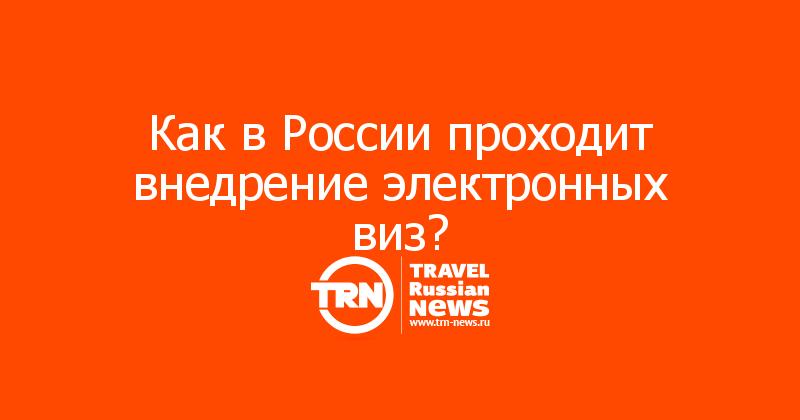 Как в России проходит внедрение электронных виз?