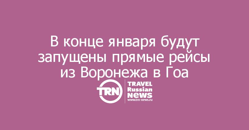 В конце января будут запущены прямые рейсы из Воронежа в Гоа