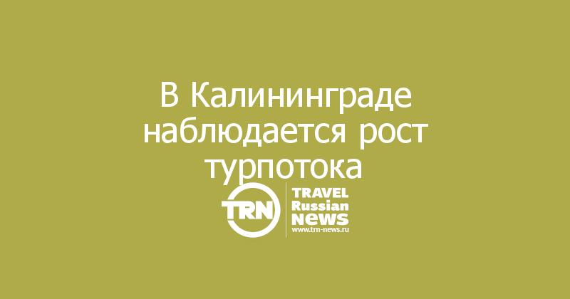 В Калининграде наблюдается рост турпотока