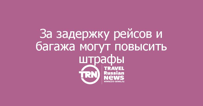 За задержку рейсов и багажа могут повысить штрафы