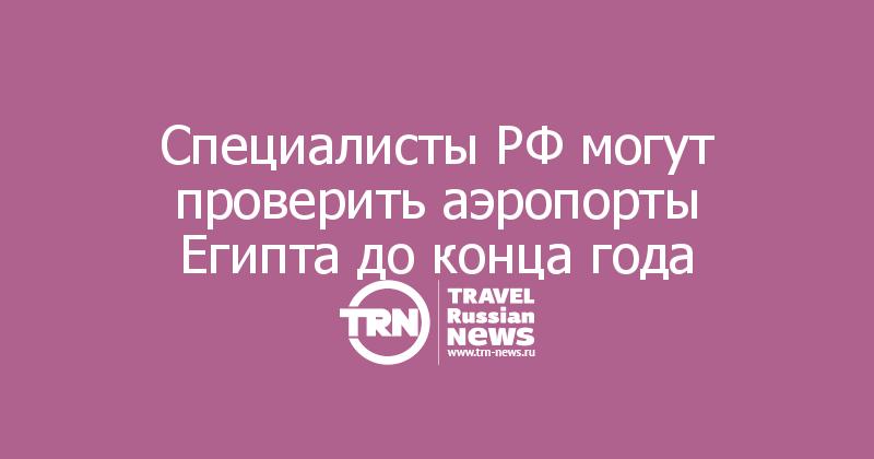 Специалисты РФ могут проверить аэропорты Египта до конца года